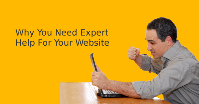 Expert help for your website